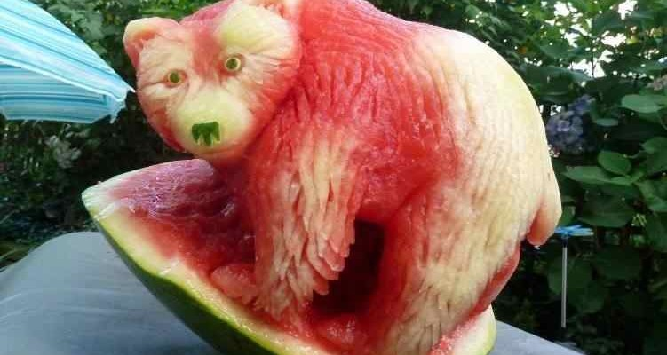 watermelon carving, grizzly!