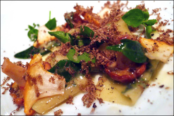 Girolles , Herb Pappardelli , Chickweed , Purslane , Truffle butter and Fresh Truffle from Tuscany.