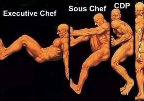 How much chefs hold place up
