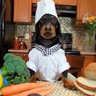 Head chef top dog